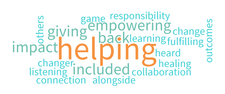 PFA Word Cloud
